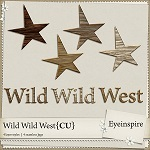 Eyeinspire_WildWildWest_PatternsP