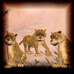 "Free scrapbook ""Cute tigers"" from mgtcsdigitalartstuff"