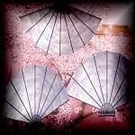 "Free scrapbook ""Deco Fans"" from mgtcsdigitalartstuff"