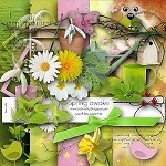 "Free scrapbook collab part ""Spring Awake"" from Paciny"